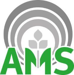 logo-ams.jpg